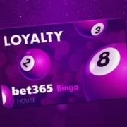 bet365 bingo promotion